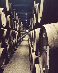 portogallo cantina vino