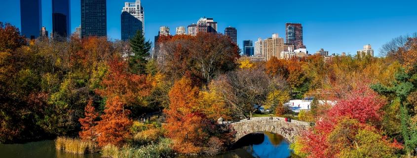 New York central park viaggio sola mainagioiaisthenewblack