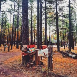 Flagstaff Arizona california viaggio