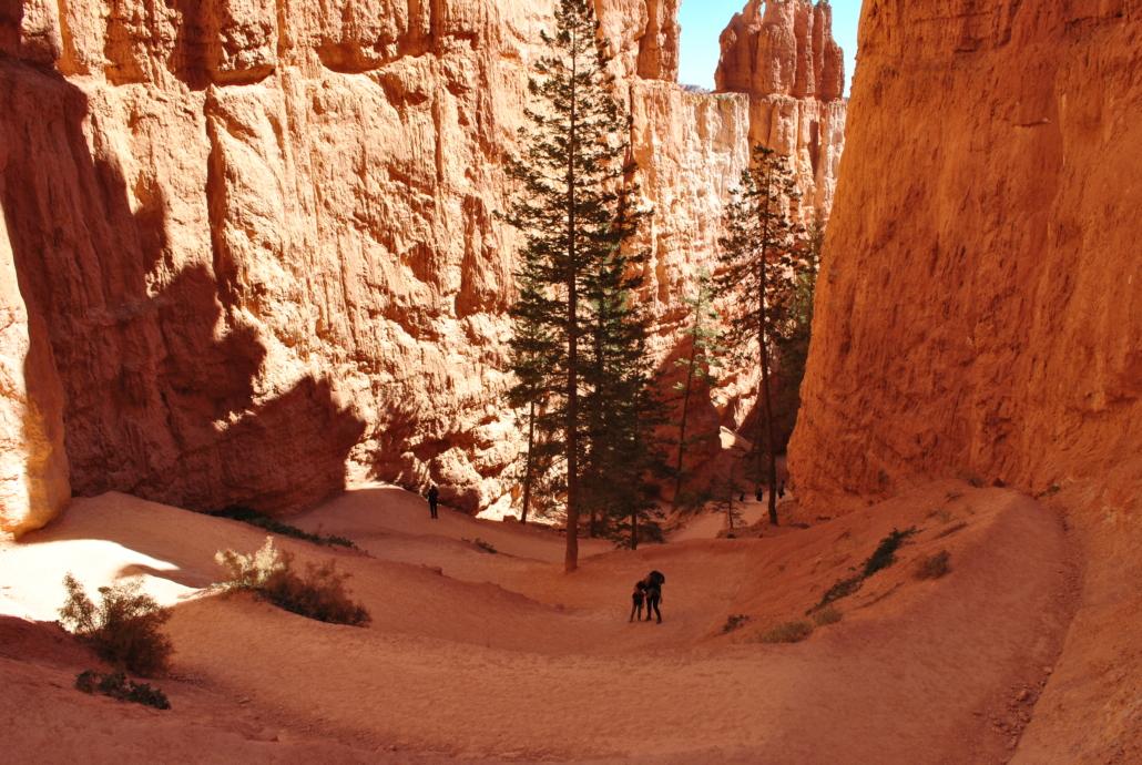 bryce canyon navajo